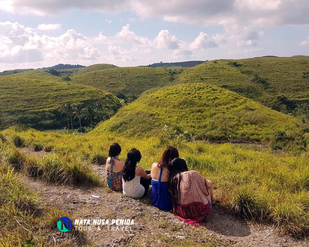 Bukit Teletubbies Nusa Penida Tour