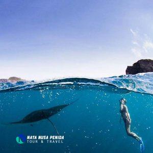 Manta Point Nusa Penida